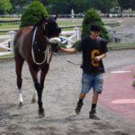 HorseRacingin East Boston